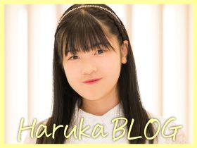 SQh_blog